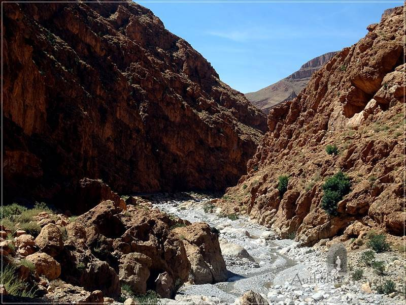 Todra Valley - red cliffs and a weak stream