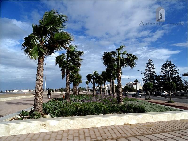 The windy beach in Essaouira