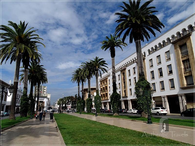 Rabat: a modern boulevard with palm trees in the New Town