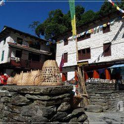 Ghorepani Trek: traditional Gurung houses in Birethanti
