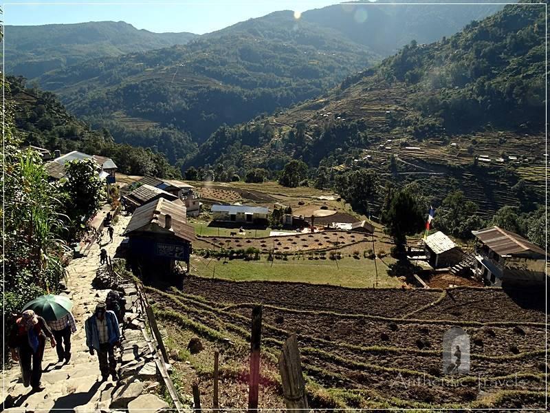 Ghorepani Trek: stone steps going up to Tikhedhungga