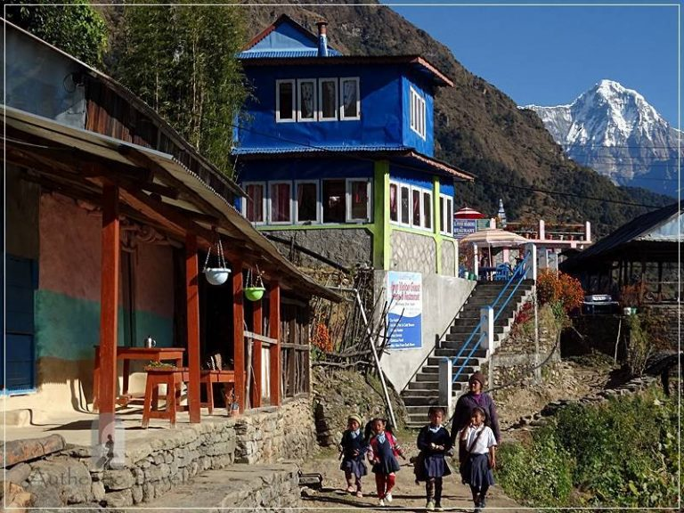 Ghorepani Trek: Banthanti - children going to school in the morning (in the background is Annapurna South Peak)