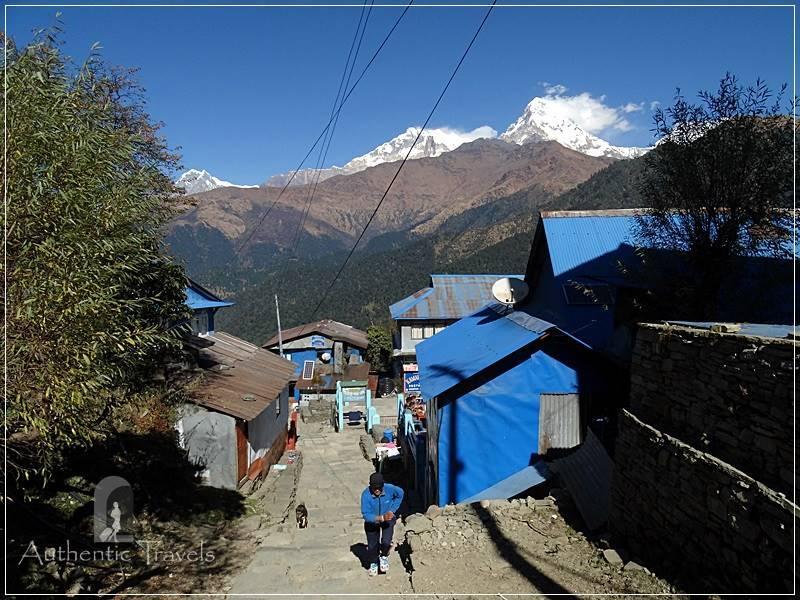 Ghorepani Trek: Upper Ghorepani (Annapurna South Peak in the background)