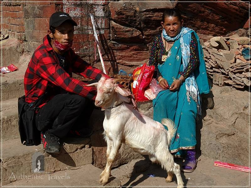 Gorkha Durbar: people bring goats and chickens to be sacrificed at the temple
