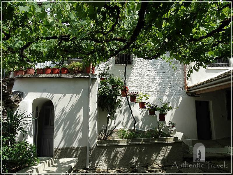 Gjirokastra - the greenery courtyard with vines of the Mele Guesthouse