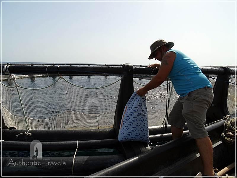 Porto Palermo Bay - Assaf feeding the fish