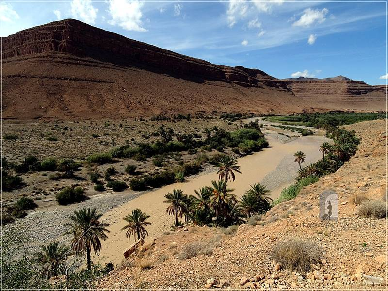 Ziz Gorges: yellow sand and rocks, palm trees, and an incredibly blue sky