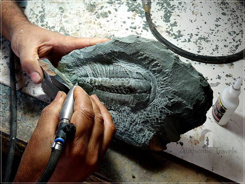 Rissani: Musee Tahiri de Fossiles – how a trilobite is discovered inside a piece of stone