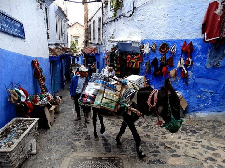 Chefchaouen: the 'Berber car' carrying everything in the medina