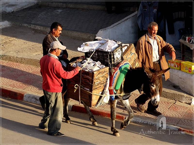 Moulay Idriss: no cars, no motor-bikes in the medina, just donkeys